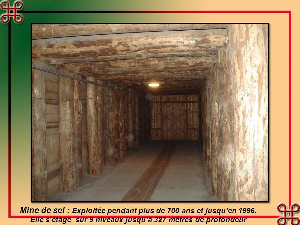 Mine de sel : Exploitée pendant plus de 700 ans et jusquen 1996.