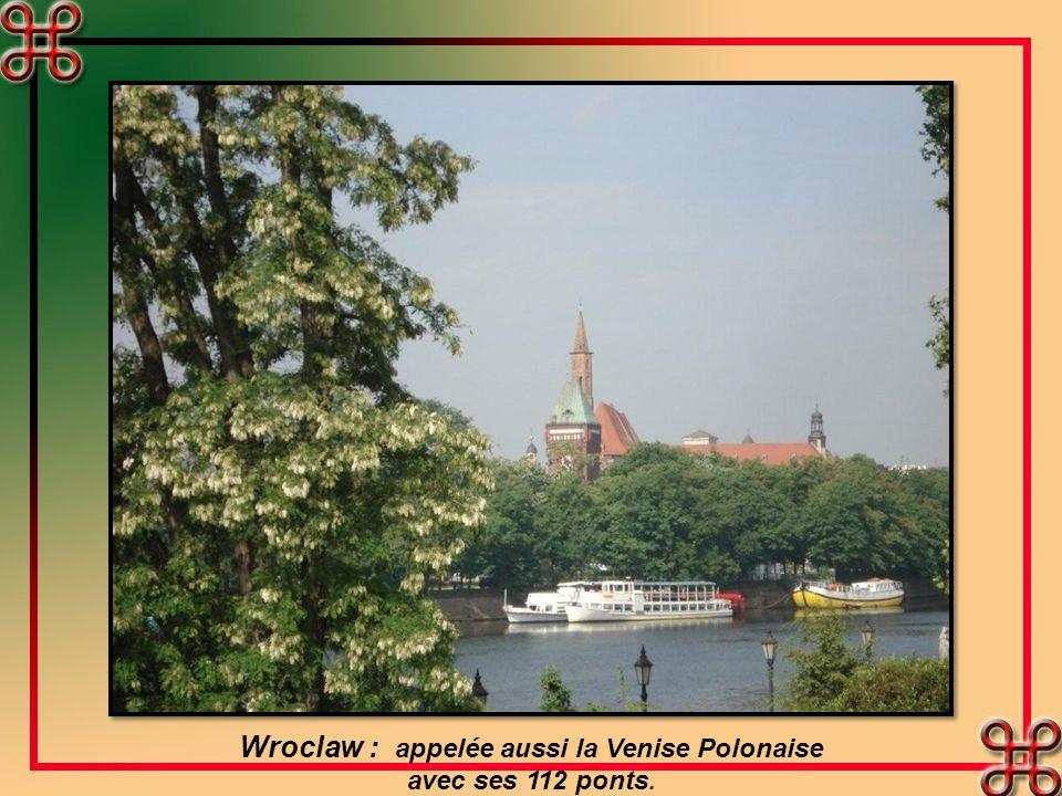 Wroclaw : appelée aussi la Venise Polonaise avec ses 112 ponts.
