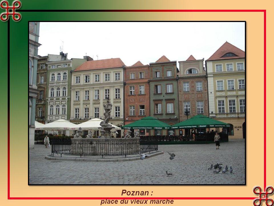 Poznan : place du vieux marché