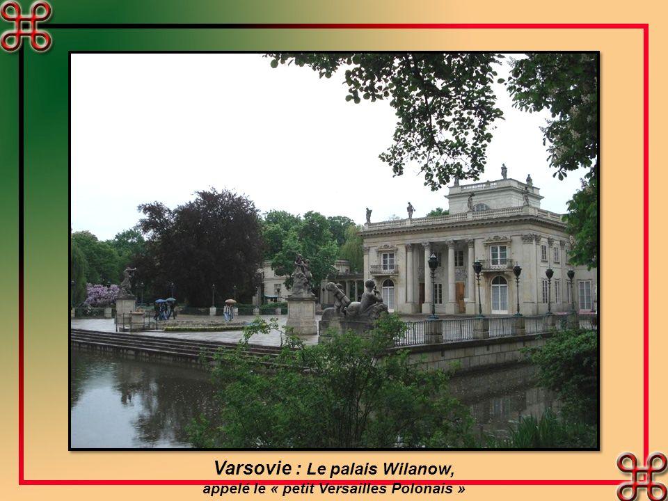 Varsovie : Maisons bourgeoises de la place du marché, à droite la sirène de la ville
