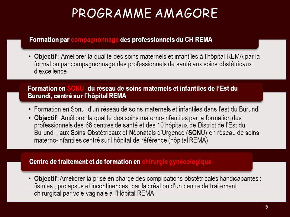 PROGRAMME AMAGORE Gynécologie Sans Frontières GSF (Nantes-France) Hôpital REMA (Ruyigi-Burundi ) Groupement hospitalier de linstitut catholique de Lille (GHICL) Lille-France Acteurs du projet Région des Pays de la Loire (PDL) Agence française de développement (AFD) Fonds privés : Association le Maillon, Fondation de Lille, Fonds propres GSF Partenaires financeurs Ministère de la Santé Publique et de Lutte contre le Sida (MSPLS) Programme National de Santé Reproductive (PNSR ) Programme Amagara Mezza (Union Européenne ) Ambassade de France Fund Nations United Aid Population ( FNUAP ) CHU de Bujumbura Association des Gynécologues-Obstétriciens Burundais ( AGOB ) Validation /Tutelles burundaises : Attestations davis Favorable 4
