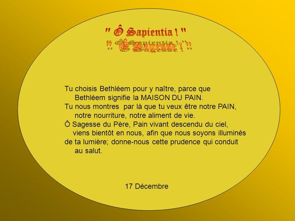 22 Décembre Tu approches toujours plus, ô Jésus, de cette Bethléem où tu devras naître .