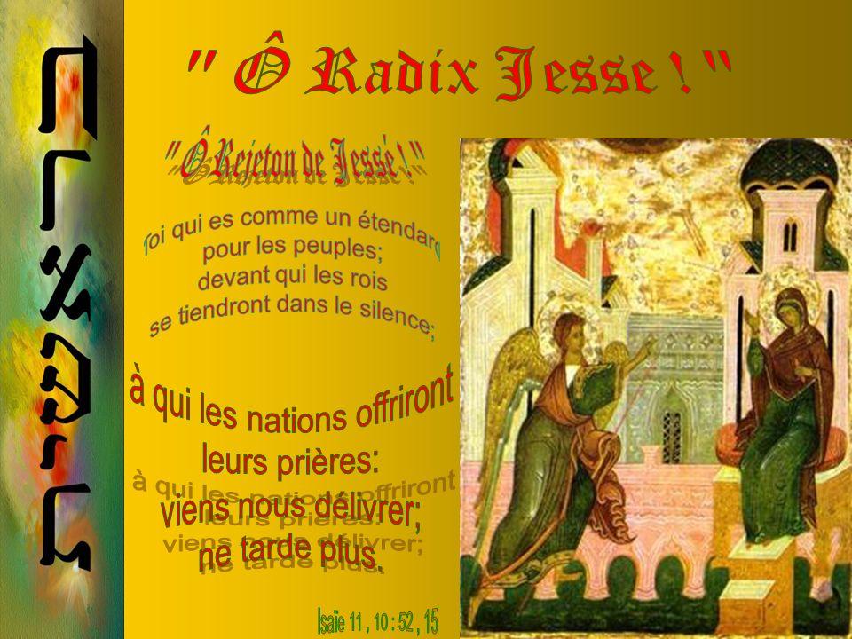 24 Décembre Sachez aujourdhui que le Seigneur viendra ; dès le matin vous verrez sa gloire.