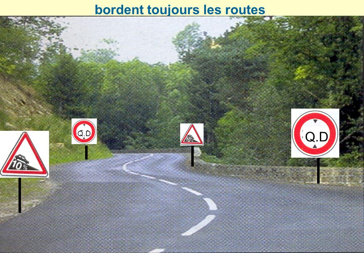 bordent toujours les routes Q.D