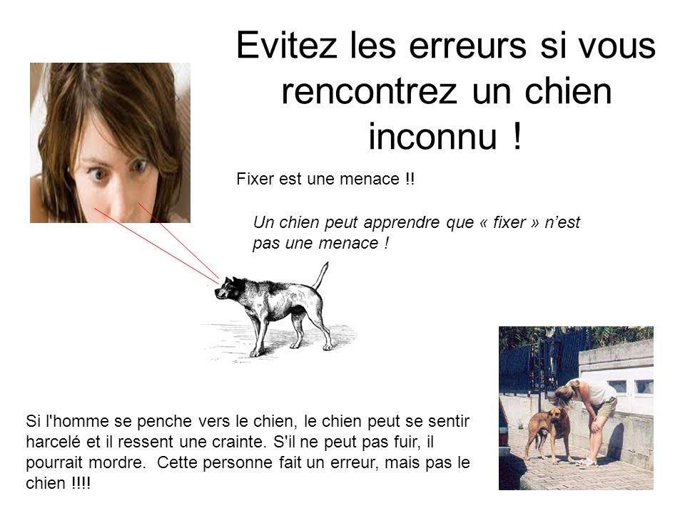 Evitez les erreurs si vous rencontrez un chien inconnu ! Un chien peut apprendre que « fixer » nest pas une menace ! Fixer est une menace !! Si l'homm
