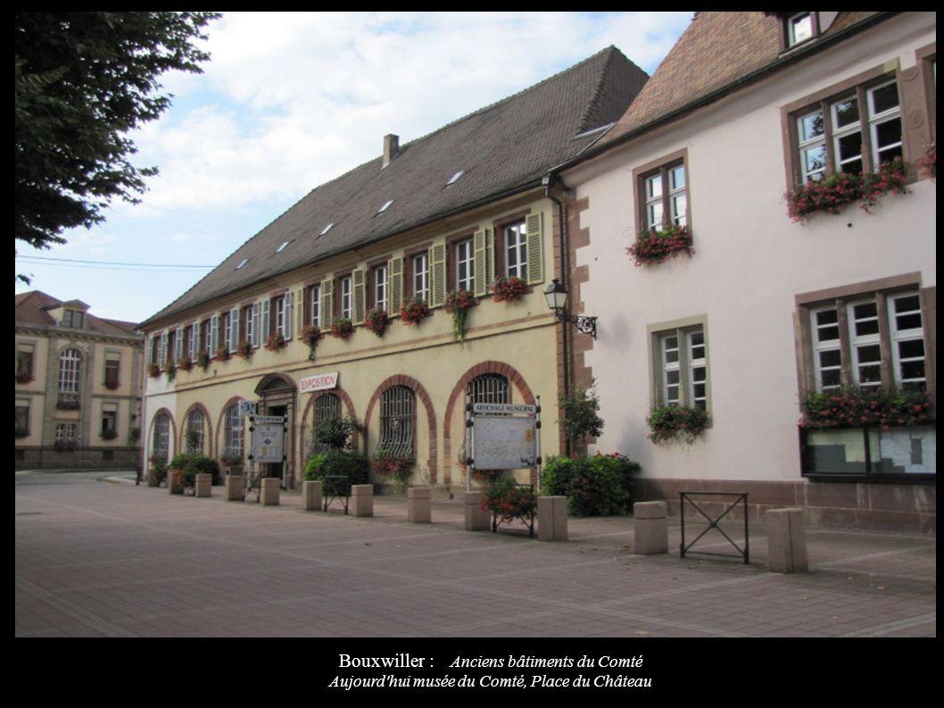Bouxwiller : Anciens bâtiments du Comté Aujourd'hui musée du Comté, Place du Château