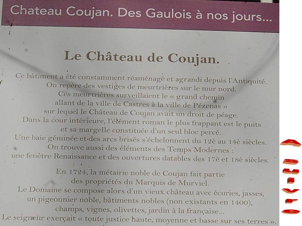 Château de Coujan