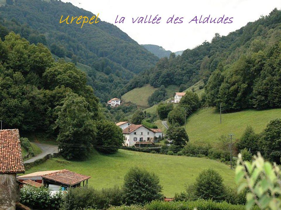 Irouleguy le vignoble St-Etienne-de-Baïgorry chèvres sur les crêtes dIparla 1044 metres