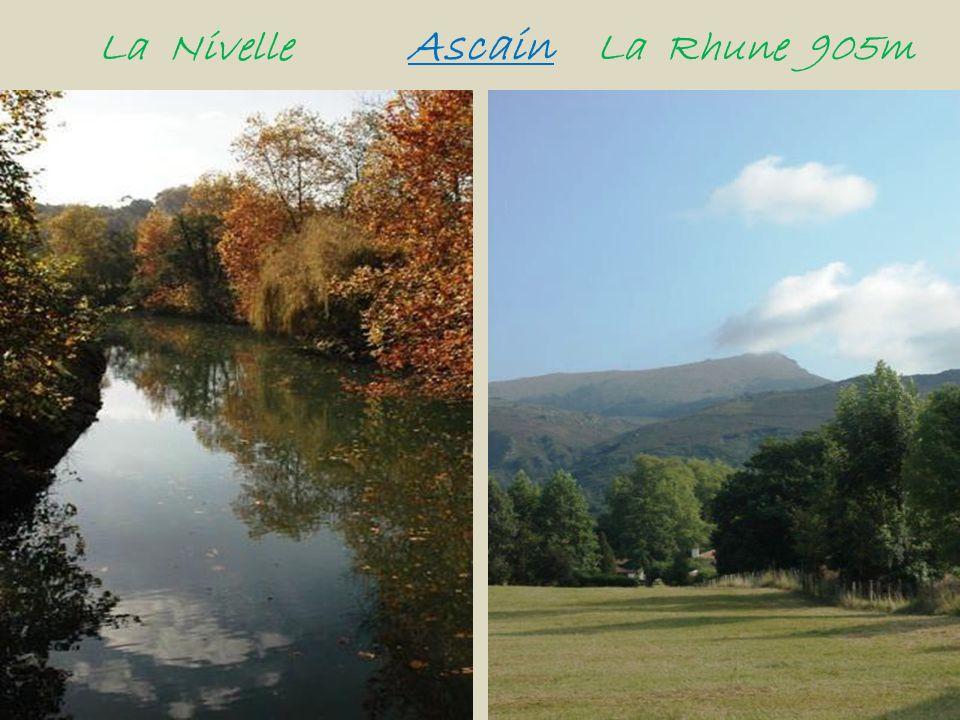 La Nivelle Ascain La Rhune 905m