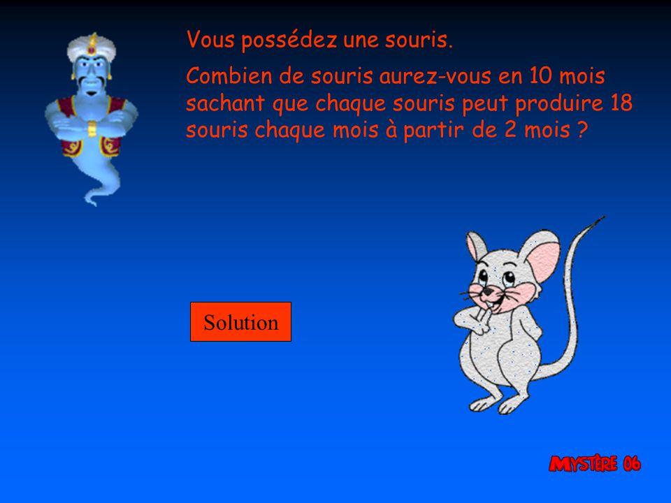 Vous possédez une souris.