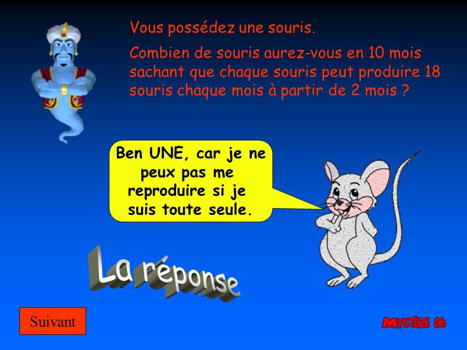 Vous possédez une souris. Combien de souris aurez-vous en 10 mois sachant que chaque souris peut produire 18 souris chaque mois à partir de 2 mois ? S