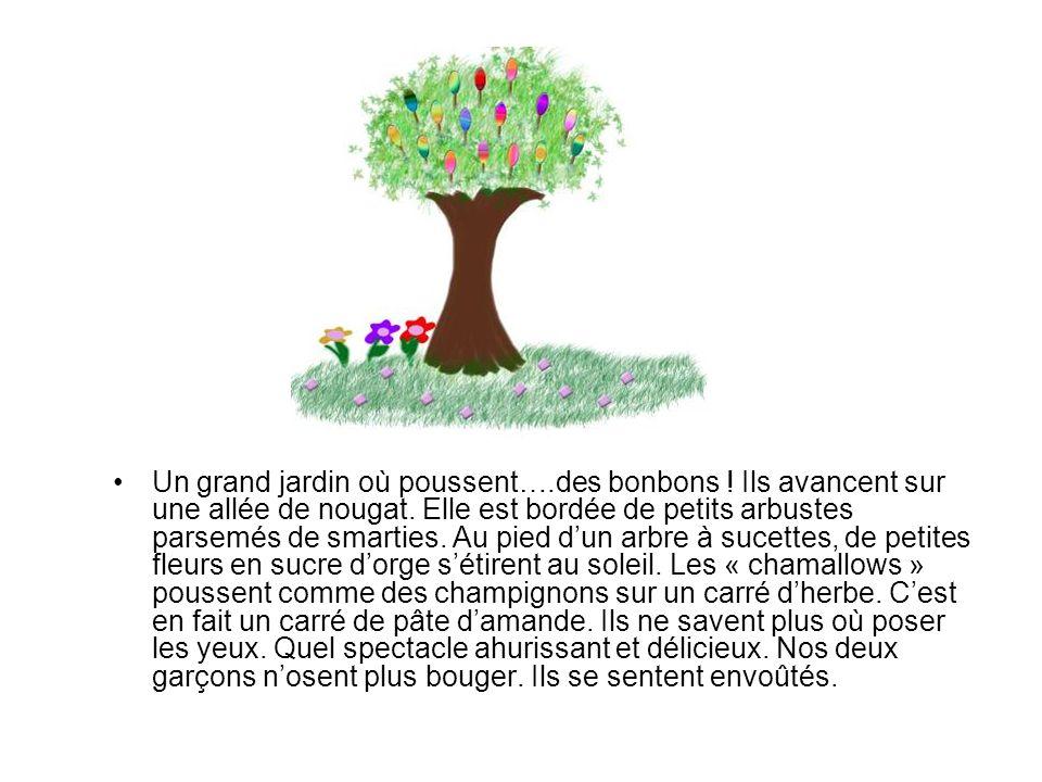 Un grand jardin où poussent….des bonbons ! Ils avancent sur une allée de nougat. Elle est bordée de petits arbustes parsemés de smarties. Au pied dun