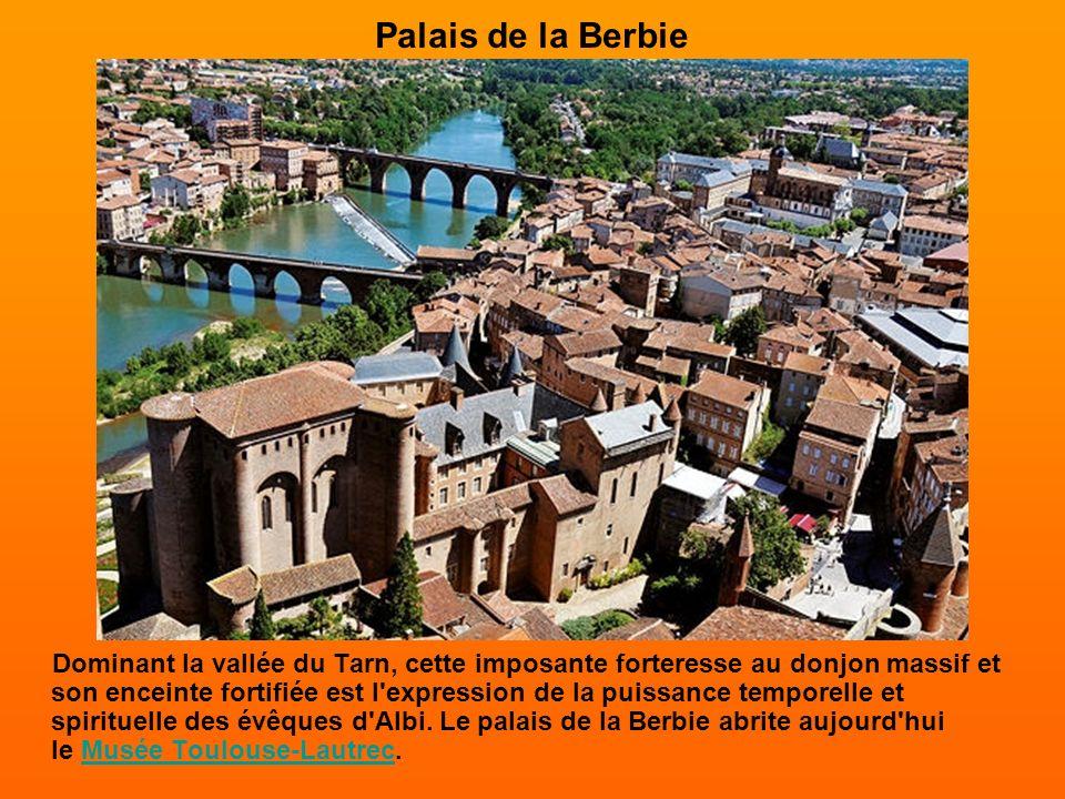 Quartier du Castelnau Au XIe siècle, l'organisation urbaine d'Albi est en pleine mutation. Les espaces libres se peuplent progressivement et donnent n
