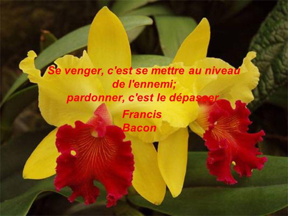 Se venger, c est se mettre au niveau de l ennemi; pardonner, c est le dépasser. Francis Bacon
