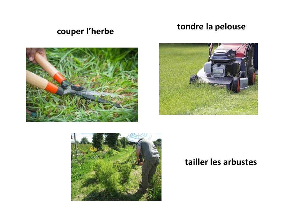 couper lherbe tondre la pelouse tailler les arbustes