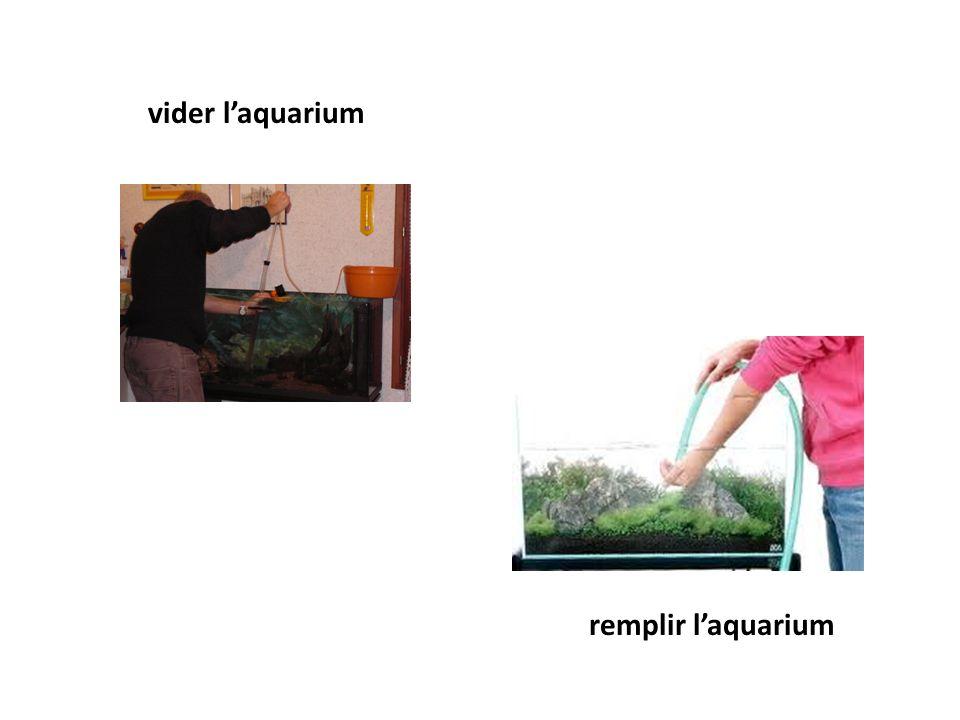 vider laquarium remplir laquarium
