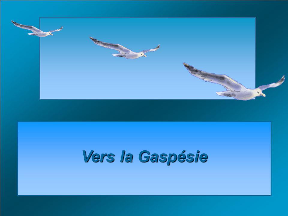Vers la Gaspésie Vers la Gaspésie