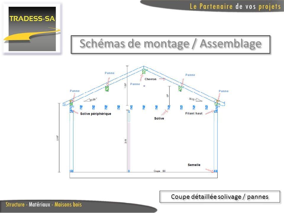 Schémas de montage / Assemblage Coupe détaillée solivage / pannes
