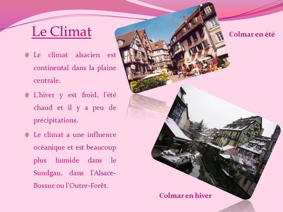Le Climat Le climat alsacien est continental dans la plaine centrale.