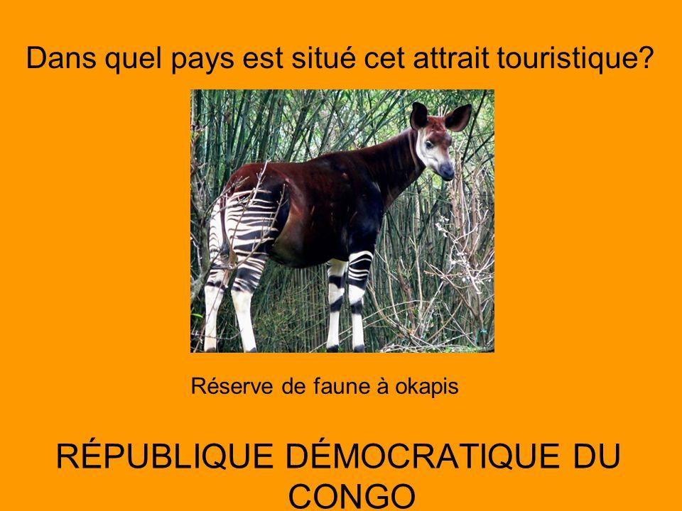Dans quel pays est situé cet attrait touristique? RÉPUBLIQUE DÉMOCRATIQUE DU CONGO Réserve de faune à okapis