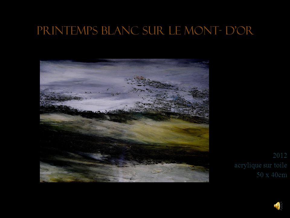 Le Puits Noir en hiver 2010 acrylique et encre sur toile 50 x 40 cm