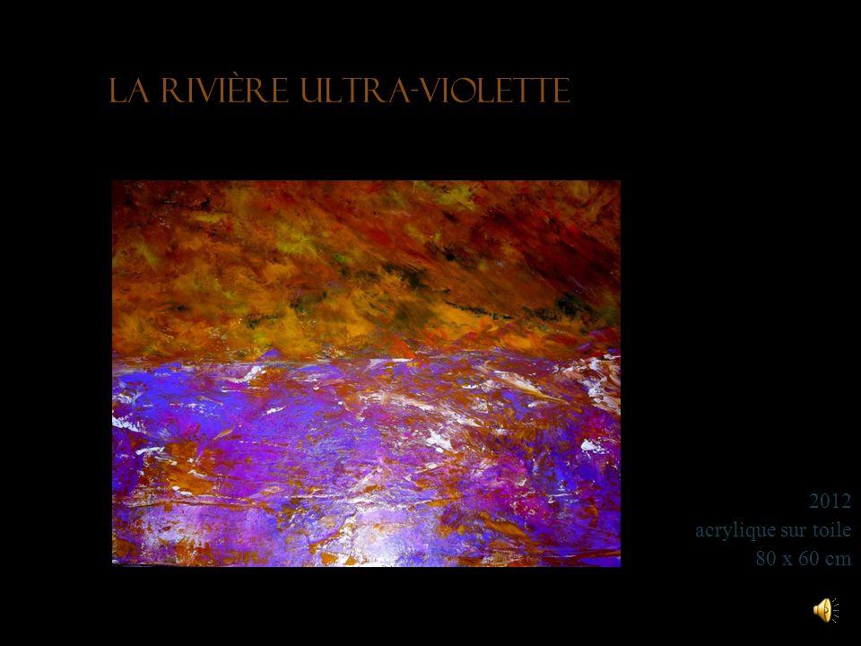 Poussières décume 2006 huile et acrylique sur toile 90 x 70 cm