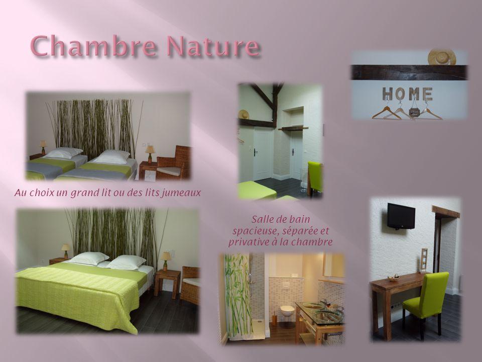 Au choix un grand lit ou des lits jumeaux Salle de bain spacieuse, séparée et privative à la chambre