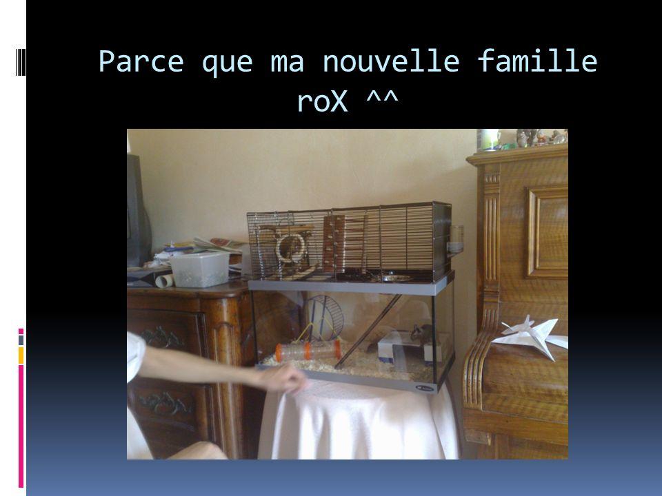 Parce que ma nouvelle famille roX ^^