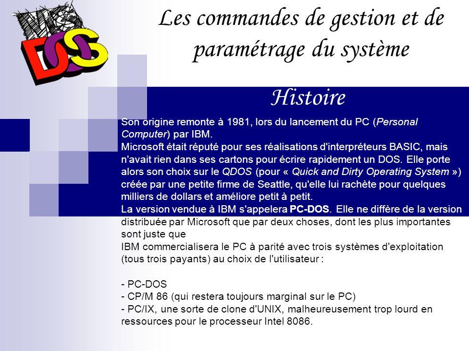 Son origine remonte à 1981, lors du lancement du PC (Personal Computer) par IBM.