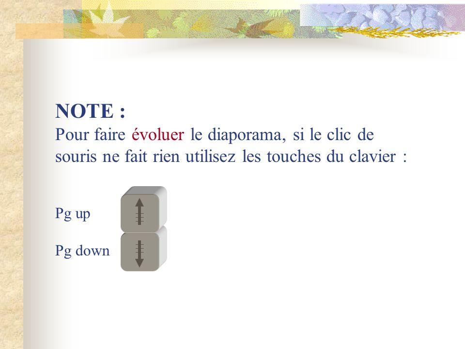 NOTE : Pour faire évoluer le diaporama, si le clic de souris ne fait rien utilisez les touches du clavier : Pg up Pg down