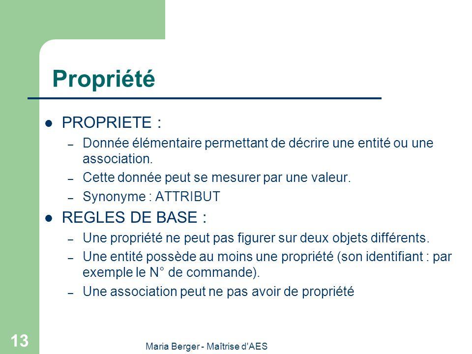 Maria Berger - Maîtrise d'AES 13 Propriété PROPRIETE : – Donnée élémentaire permettant de décrire une entité ou une association. – Cette donnée peut s