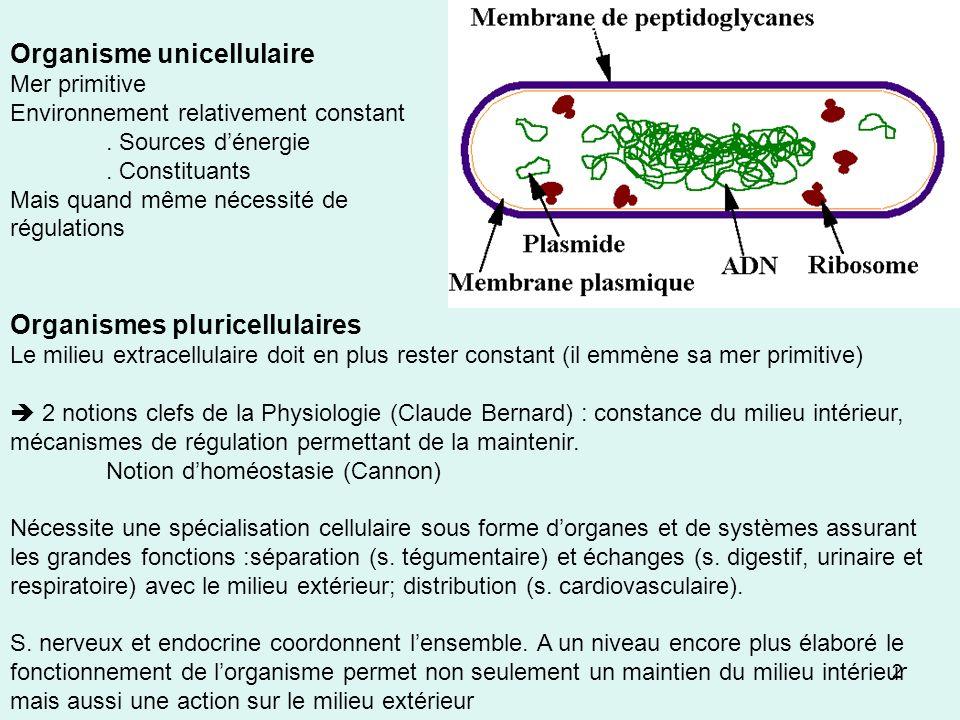 2 Organisme unicellulaire Mer primitive Environnement relativement constant. Sources dénergie. Constituants Mais quand même nécessité de régulations O