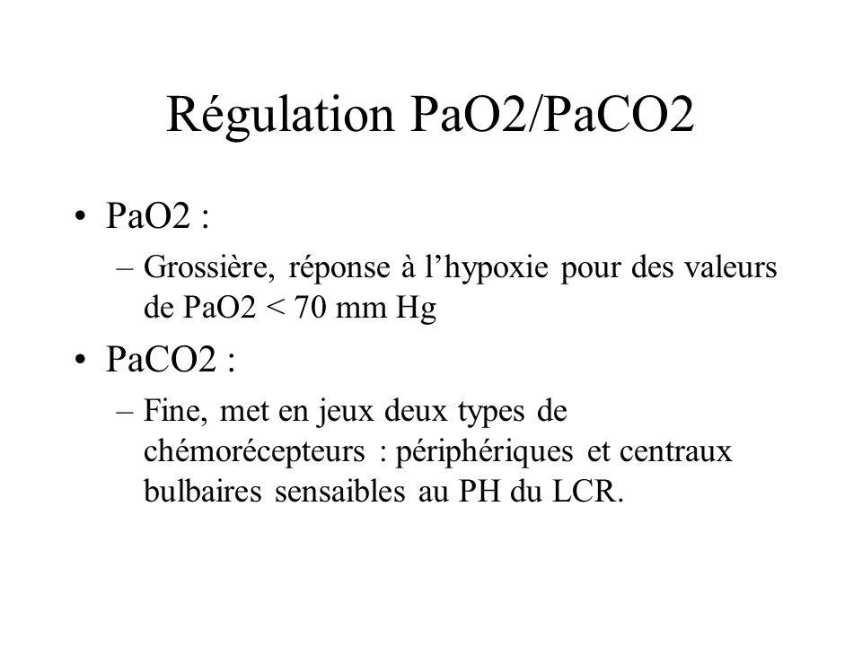 Régulation PaO2/PaCO2 PaO2 : –Grossière, réponse à lhypoxie pour des valeurs de PaO2 < 70 mm Hg PaCO2 : –Fine, met en jeux deux types de chémorécepteu