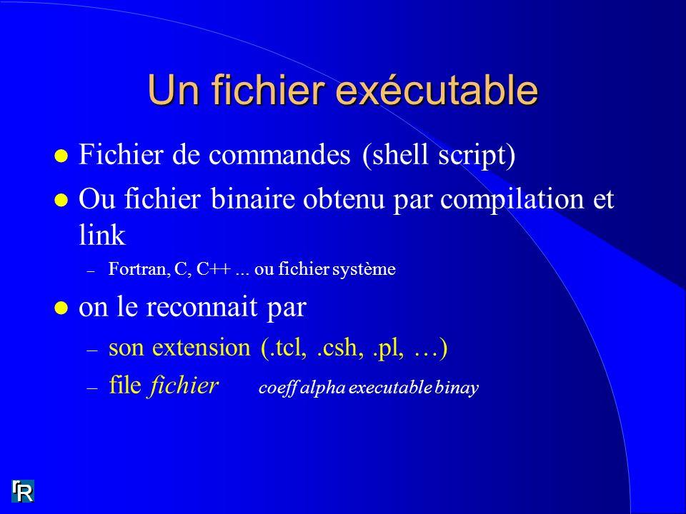 Un fichier exécutable l Fichier de commandes (shell script) l Ou fichier binaire obtenu par compilation et link – Fortran, C, C++... ou fichier systèm
