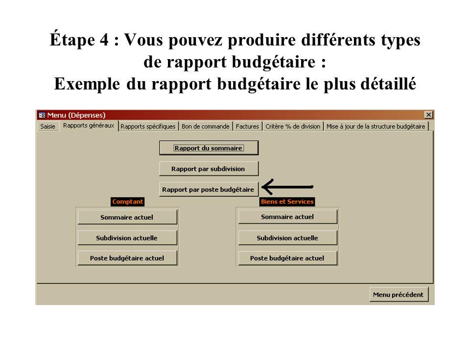 Étape 4 : Vous pouvez produire différents types de rapport budgétaire : Exemple du rapport budgétaire le plus détaillé