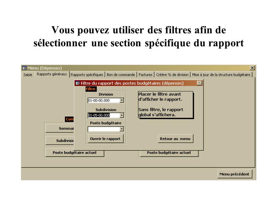 Vous pouvez utiliser des filtres afin de sélectionner une section spécifique du rapport