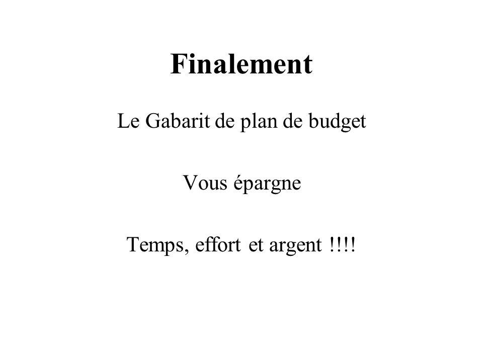 Finalement Le Gabarit de plan de budget Vous épargne Temps, effort et argent !!!!