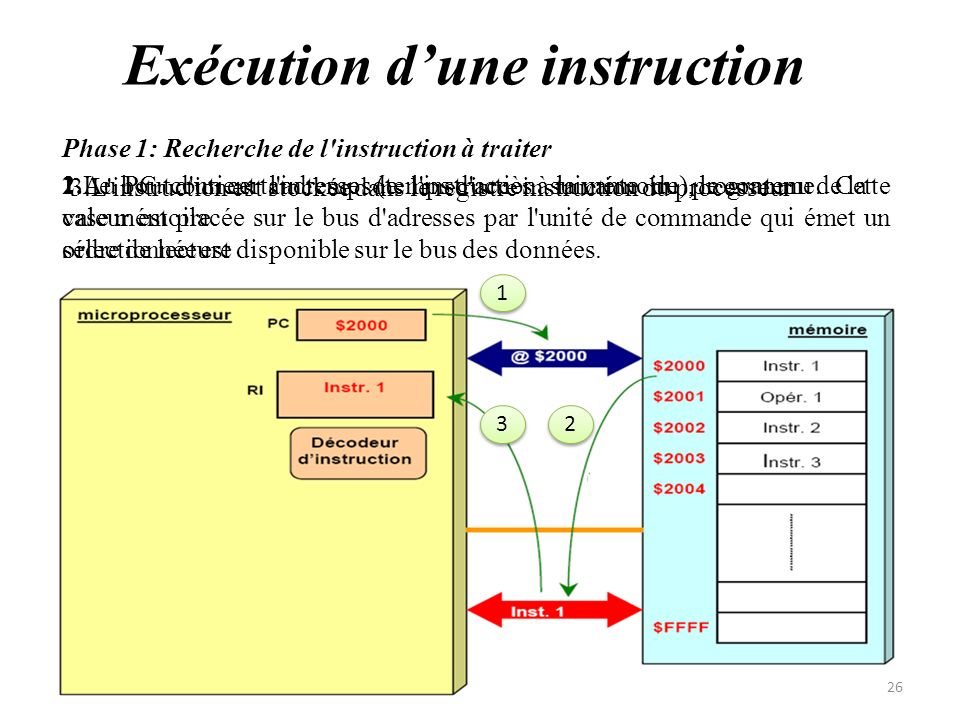 2.Au bout d'un certain temps (temps d'accès à la mémoire), le contenu de la case mémoire sélectionnée est disponible sur le bus des données. Exécution