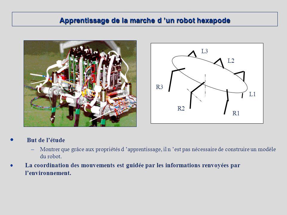 Apprentissage de la marche d un robot hexapode But de létude –Montrer que grâce aux propriétés d apprentissage, il n est pas nécessaire de construire un modèle du robot.