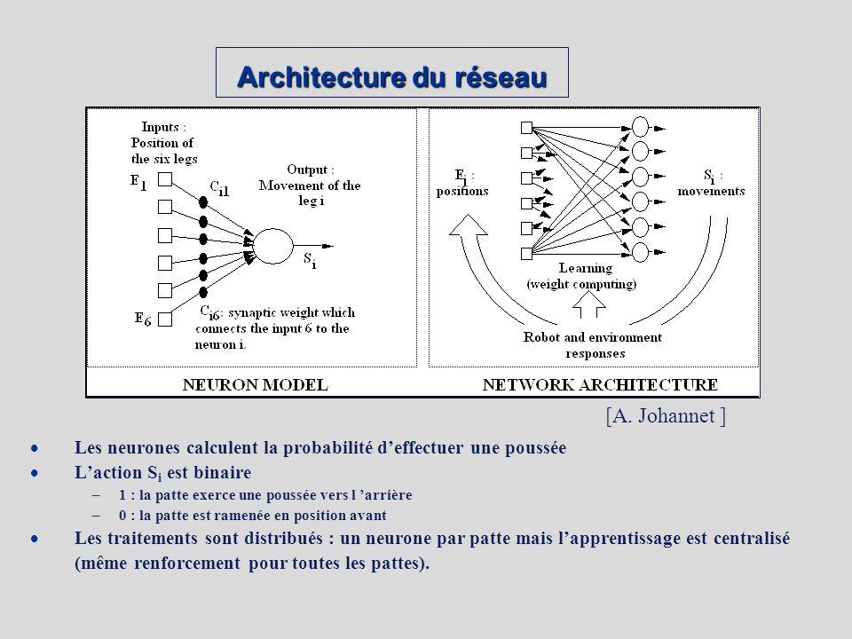 Architecture du réseau Les neurones calculent la probabilité deffectuer une poussée Laction S i est binaire –1 : la patte exerce une poussée vers l arrière –0 : la patte est ramenée en position avant Les traitements sont distribués : un neurone par patte mais lapprentissage est centralisé (même renforcement pour toutes les pattes).