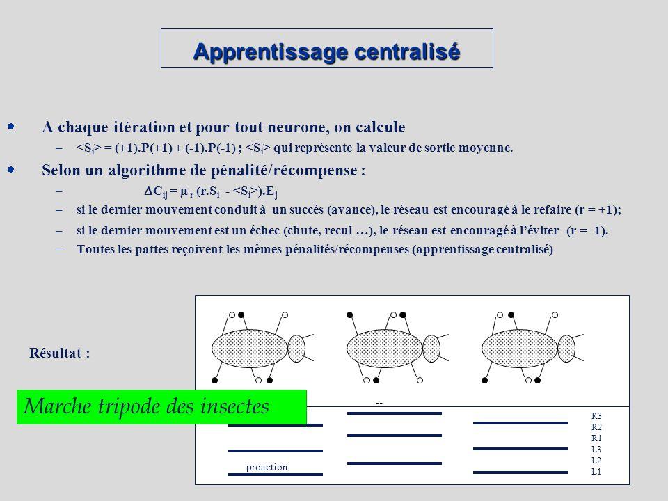 Apprentissage centralisé A chaque itération et pour tout neurone, on calcule – = (+1).P(+1) + (-1).P(-1) ; qui représente la valeur de sortie moyenne.