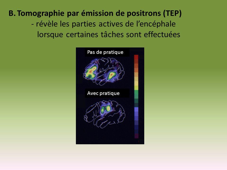 B.Tomographie par émission de positrons (TEP) - révèle les parties actives de lencéphale lorsque certaines tâches sont effectuées Pas de pratique Avec