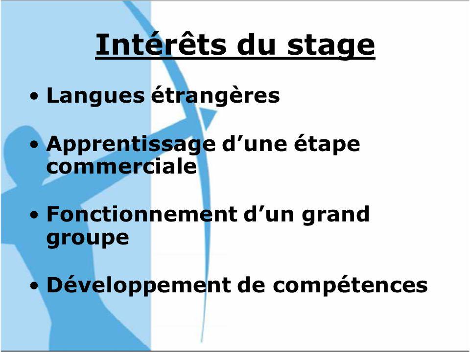 Intérêts du stage Langues étrangères Apprentissage dune étape commerciale Fonctionnement dun grand groupe Développement de compétences