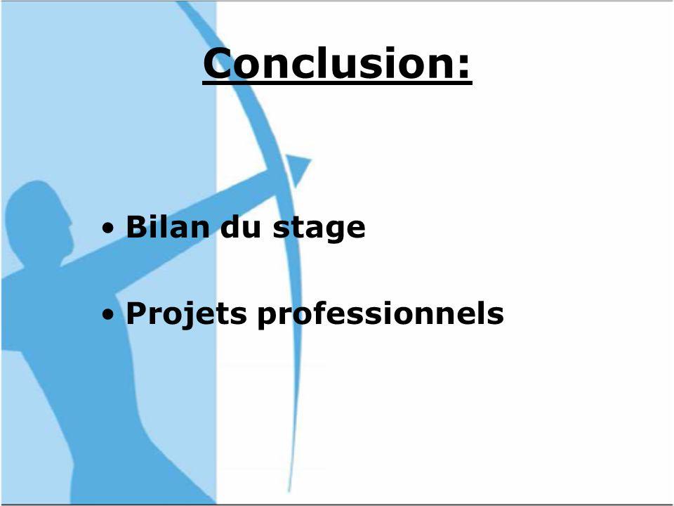 Conclusion: Bilan du stage Projets professionnels