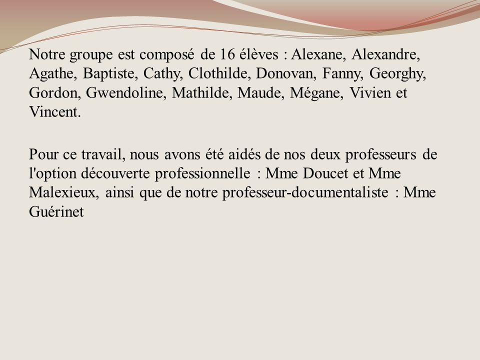Notre groupe est composé de 16 élèves : Alexane, Alexandre, Agathe, Baptiste, Cathy, Clothilde, Donovan, Fanny, Georghy, Gordon, Gwendoline, Mathilde,