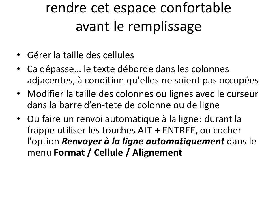 rendre cet espace confortable avant le remplissage Gérer la taille des cellules Ca dépasse… le texte déborde dans les colonnes adjacentes, à condition qu elles ne soient pas occupées Modifier la taille des colonnes ou lignes avec le curseur dans la barre den-tete de colonne ou de ligne Ou faire un renvoi automatique à la ligne: durant la frappe utiliser les touches ALT + ENTREE, ou cocher l option Renvoyer à la ligne automatiquement dans le menu Format / Cellule / Alignement