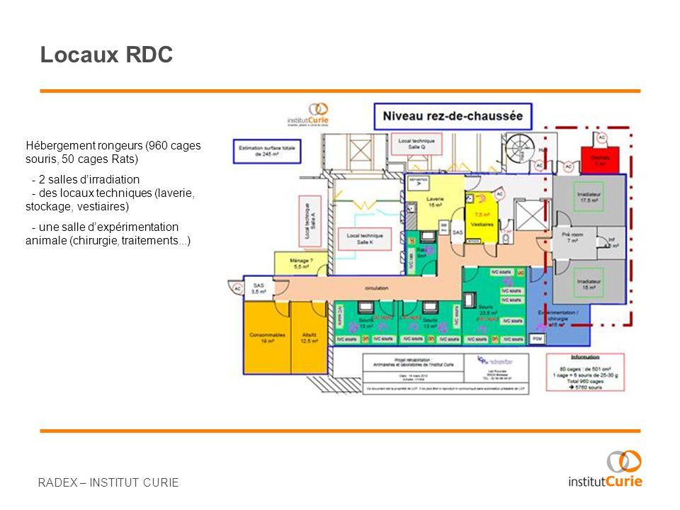 Locaux RDC RADEX – INSTITUT CURIE Hébergement rongeurs (960 cages souris, 50 cages Rats) - 2 salles dirradiation - des locaux techniques (laverie, sto