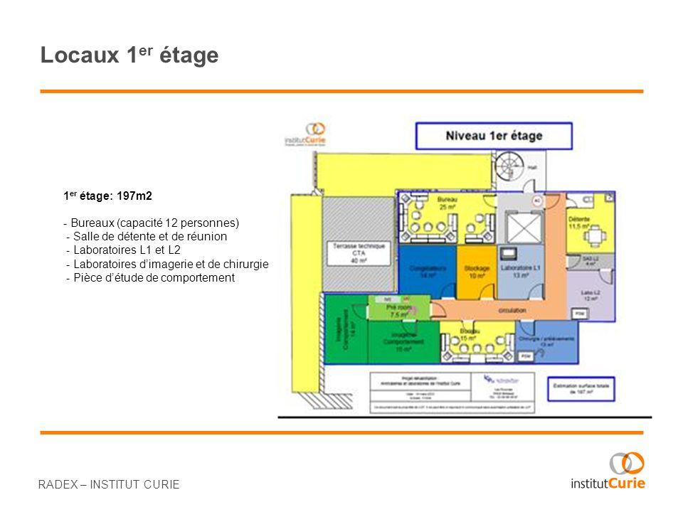 RADEX – INSTITUT CURIE Locaux 1 er étage 1 er étage: 197m2 - Bureaux (capacité 12 personnes) - Salle de détente et de réunion - Laboratoires L1 et L2