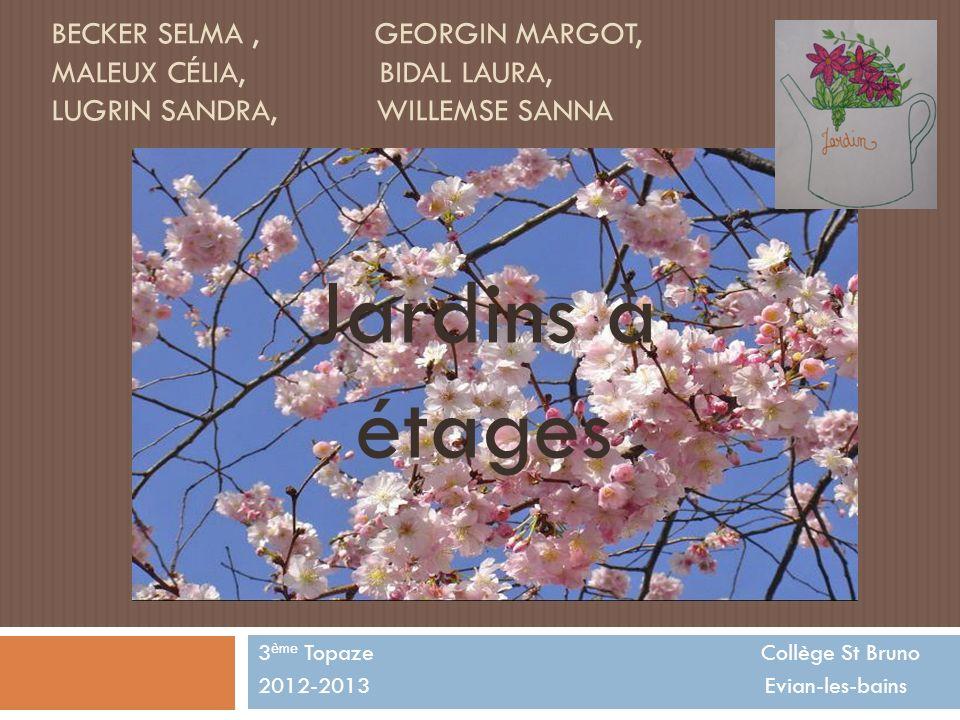 BECKER SELMA, GEORGIN MARGOT, MALEUX CÉLIA, BIDAL LAURA, LUGRIN SANDRA, WILLEMSE SANNA 3 ème Topaze Collège St Bruno 2012-2013 Evian-les-bains Jardins