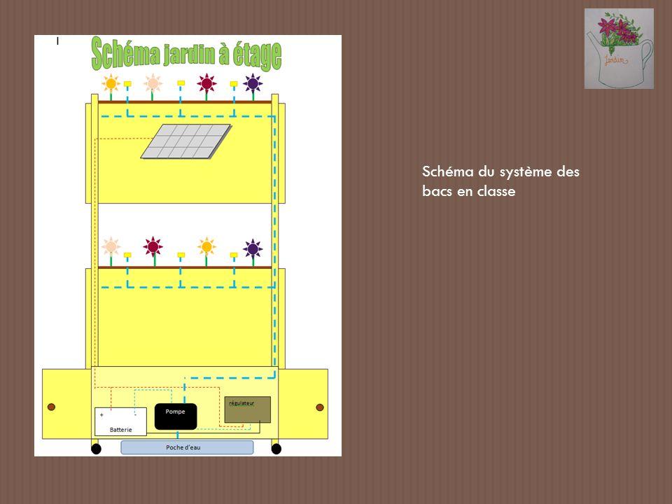 Schéma du système des bacs en classe